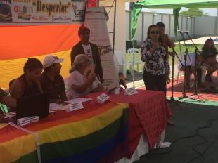 2do encuentro nacional y segunda asamblea de la federación ecuatoriana de organizaciones LGBTI (10)